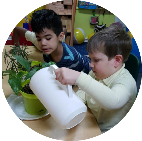 two boy pouring water to the plant